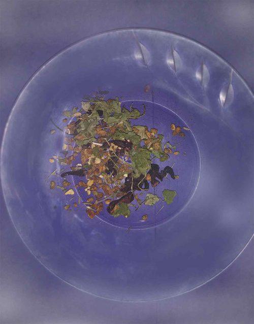 genius-zone-tea-leaves